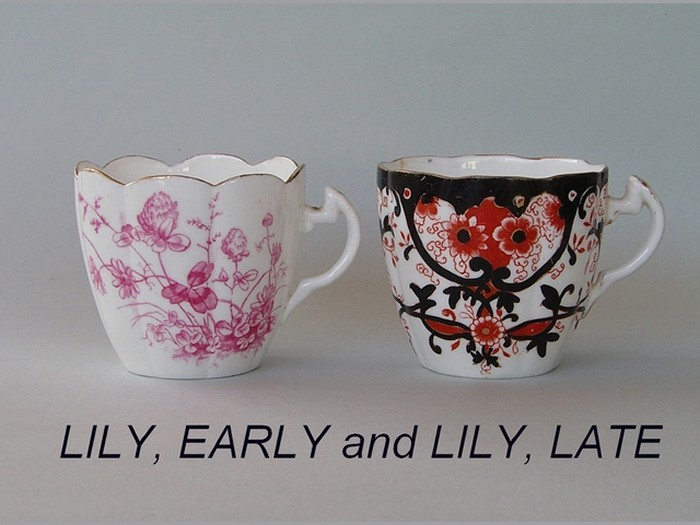 LILY, EARLY and LILY, LATE