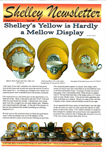 Cover of Shelley Newsletter Volume 21 No. 2 June 2007